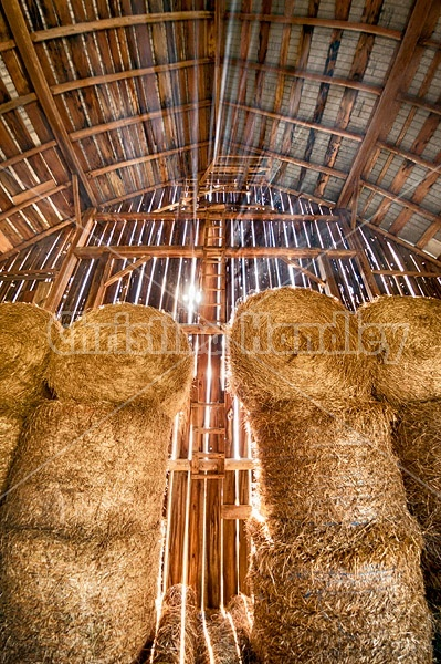 Inside the hayloft of an old barn filled with round bales of straw. The sun is streaming through the cracks of the barn boards.