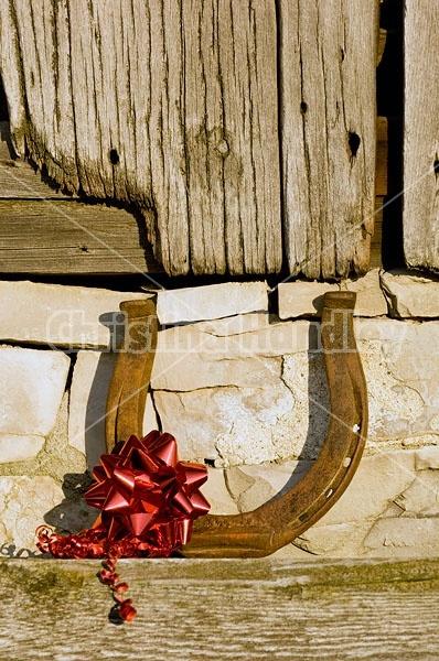 Horseshoe Christmas decoration