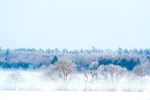 Farm field scene on a cold frosty winter morning