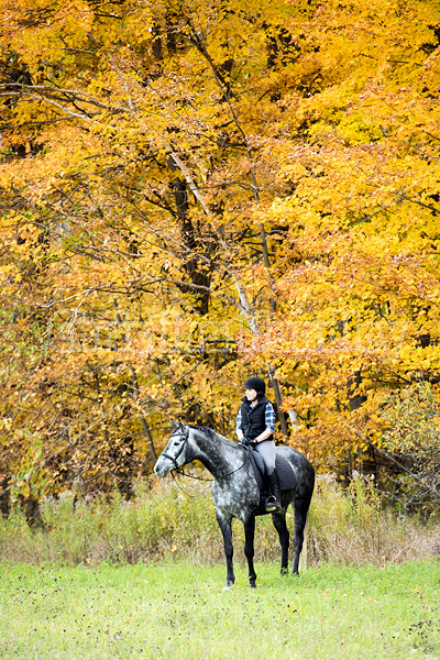 Young woman riding gray horse in the autumn colors