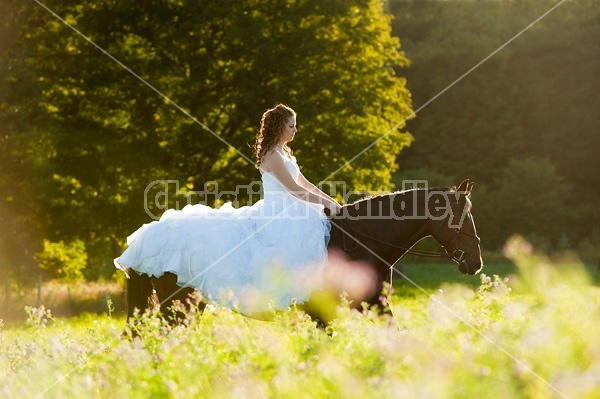 Woman riding horse wearing a wedding dress
