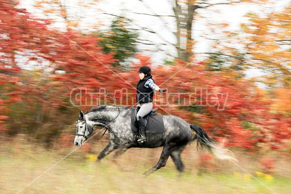 Woman riding gray horse