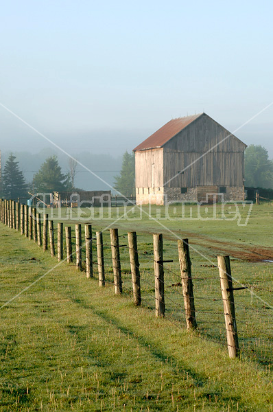 Barbed wire fence on cedar posts