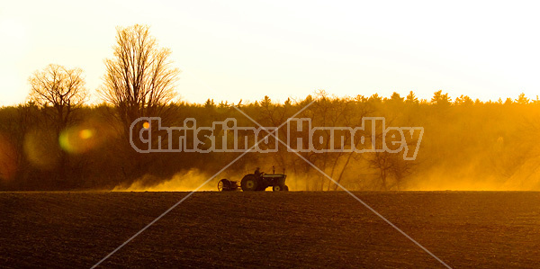 Farmer driving tractor pulling seed drill seeding oats