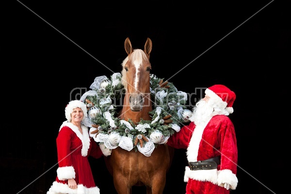 Santa Claus and Mrs Claus standing with a Belgian draft horse with a Christmas wreath over its head.