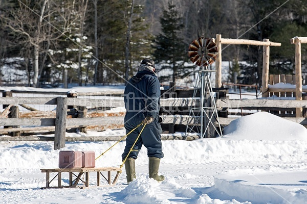 Farmer pulling salt and mineral blocks on old wooden sleigh to put out for animals