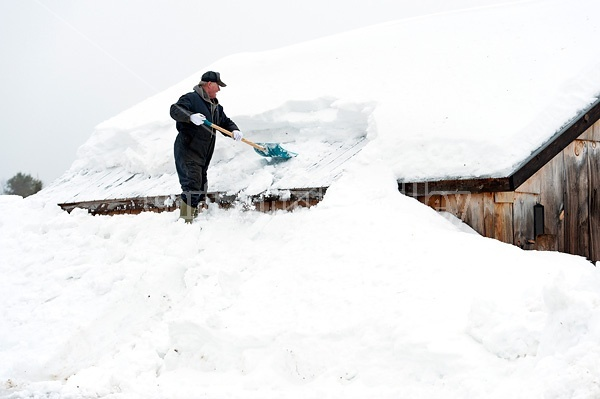 Man shoveling heavy snow off barn roof.