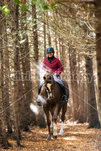 Woman horseback riding in cedar forest in dramatic light