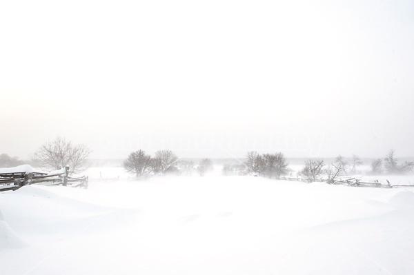 Blowing snow around farm yard