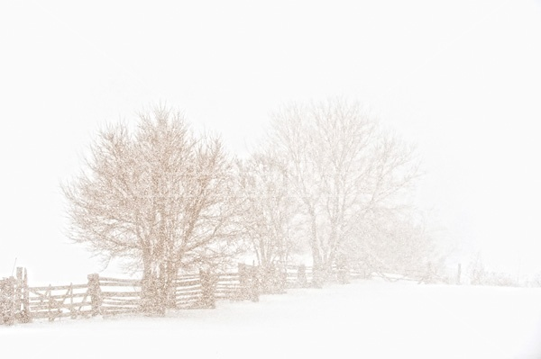 Photo of rail fence in heavy snowstorm