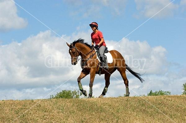 Woman horseback riding in field