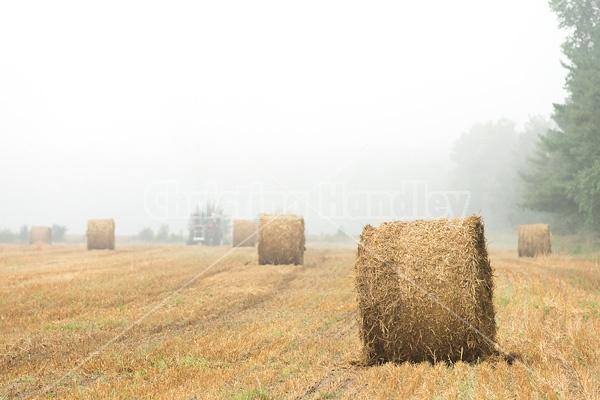 Farmer baling round bales of straw