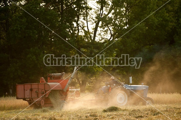 Combining oats