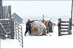 Farmer with tractor and round bale of hay