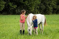 Potrait of two girls with a gray pony