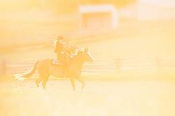 Young woman riding an American Paint Horse mare in the golden glow of the late evening light