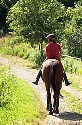 Woman horseback riding on a summer day