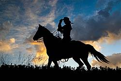 Silhouette of a cowgirl riding western.