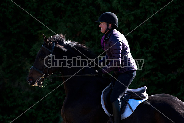 Woman riding Thoroughbred horse in dramatic light