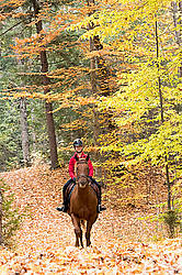 Young girl horseback riding through the autumn colored forest
