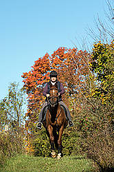 Woman riding a Chestnut Thoroughbred horse