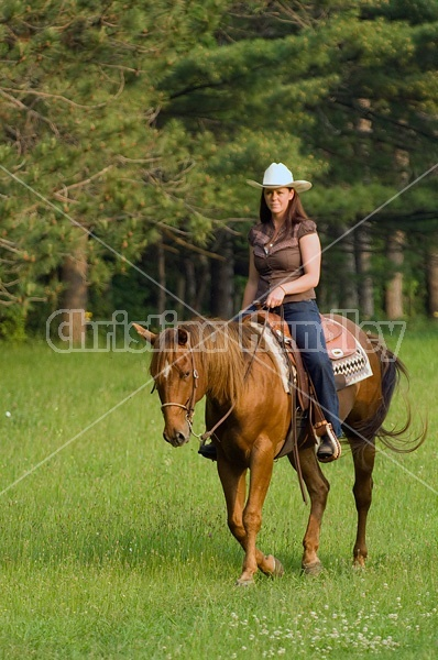Young woman riding chestnut horse.