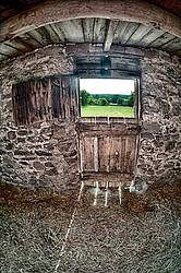 Standing inside an old barn looking out through the door