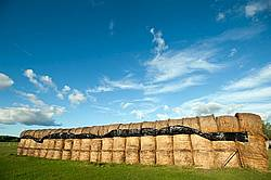 Round bales of hay stacked up