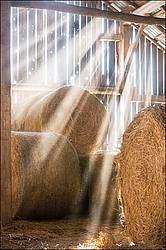 Sunlight streaming through barn boards into hayloft