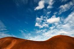 Horse equiscape or landscape