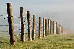Barbed wire fence in the fog