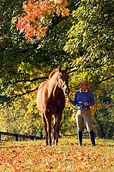 Young woman leading chestnut horse