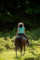 Woman trail riding on Standardbred mare