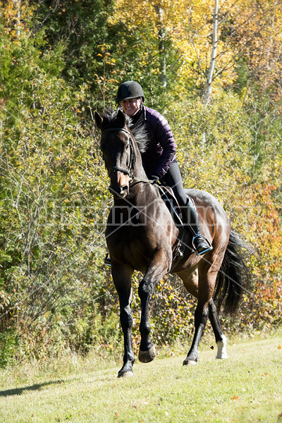 Woman riding Thoroughbred horse