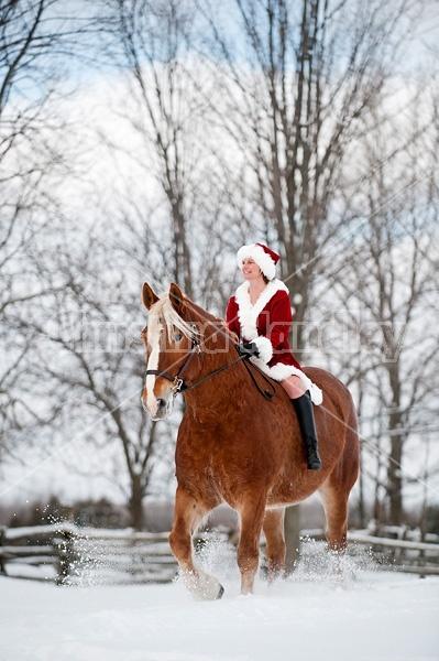 Mrs. Claus riding a Belgian draft horse bareback
