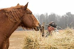 Farmer standing next to round bale of hay patting horse