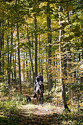 Woman horseback riding through a hardwood forest in the autumn time
