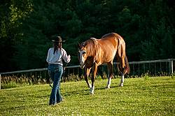Young woman catching her Paint mare out of the paddock