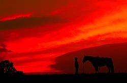 Silhouette of a cowgirl against a colorful sky
