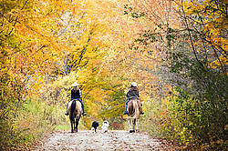 Two young women horseback riding through autumn colored scenery