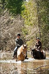 Riding Rocky Mountain Horses