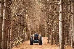 Farmer driving tractor down wooded trail