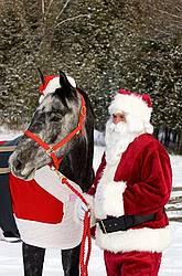 Santa Claus and his Horse