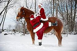 Santa Claus and Mrs. Claus horseback riding