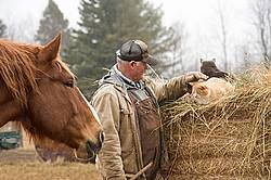 Farmer patting cat that is sitting on round bale of hay while horse watches