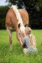 Portrait of a young girl with a Haflinger horse.