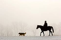 Horseback riding in the early morning fog