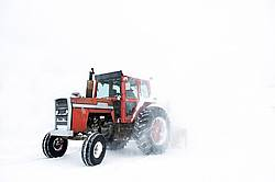 Using tractor and snowblower on a farm to clear snow during a snowstorm.