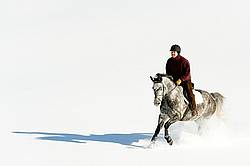 Man riding grey horse galloping through deep snow