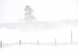 Blowing snow around farm yard